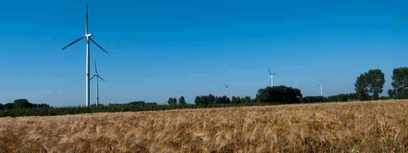 Windpark-koren-2
